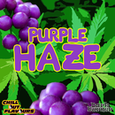 Purple Haze Aroma 10ml -ChillOut-